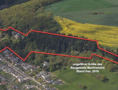 Stadtrat vertagt einstimmig Beschluss über das Baugebiet Martinsheim